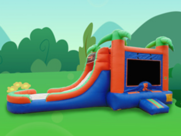 4 IN 1 PARADISE Wet OR Dry BOUNCE COMBO All Day Rental